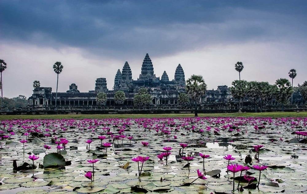 Поехать в Камбоджу