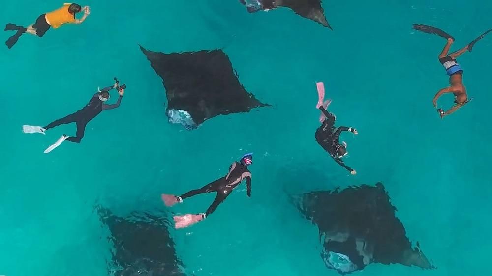 новогодние туры на Мальдивы