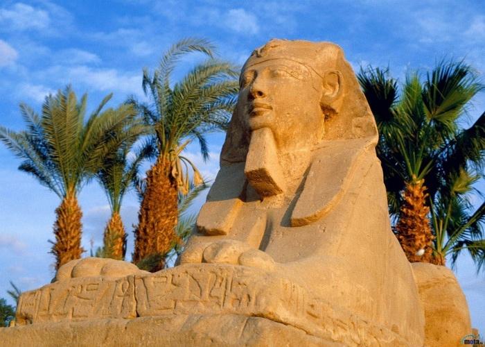 Путешествие в Египет 4