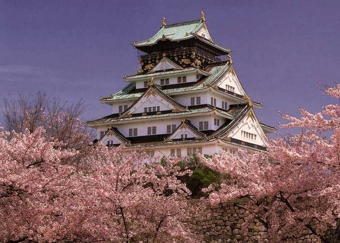 Почему путешествие в Японию интересно 2