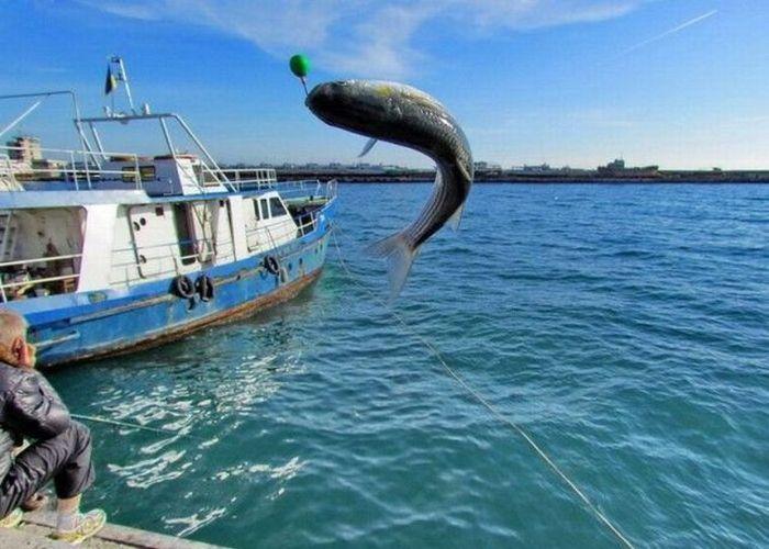 Рыболовный туризм 3