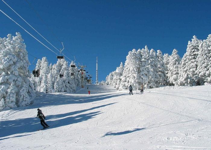 Туризм и горнолыжные курорты 3