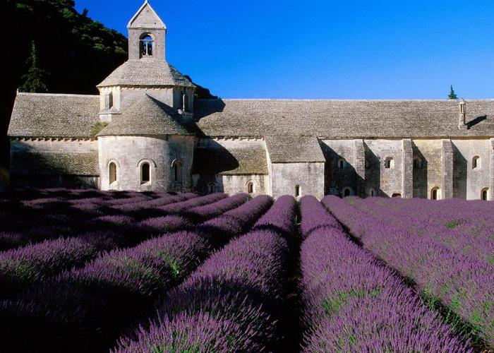 Путешествие в столицу Франции 4