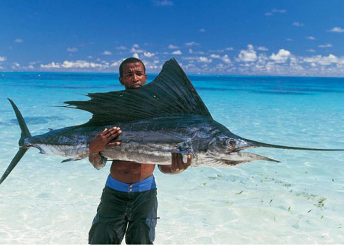 Туризм и рыбалка 4