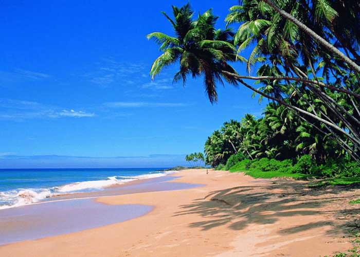 Путешествие на Шри Ланку 3