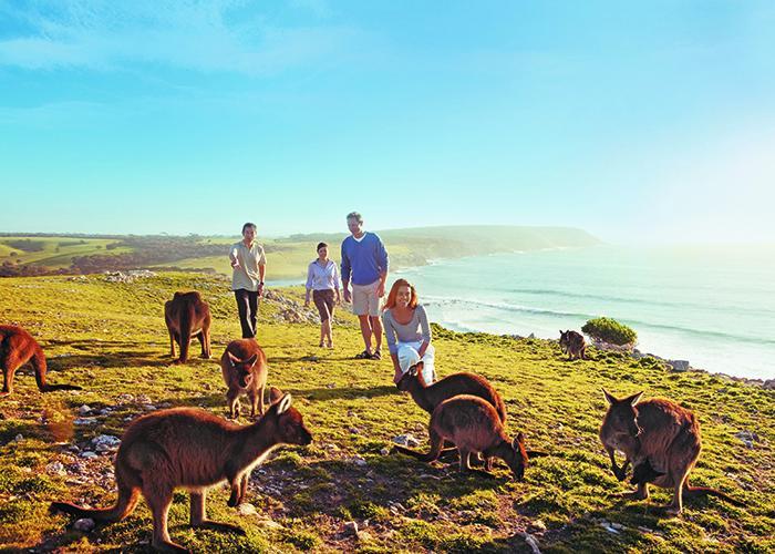 Путешествие по миру Австралия 5