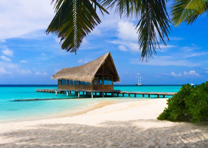 Куда поехать на отдых и как подготовиться к путешествию 2