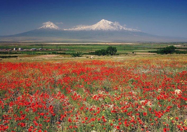 Ararat. Noahs Ark 2