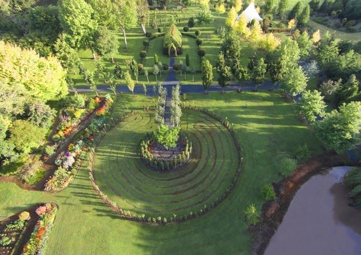 Barry Cox Tree Church 3