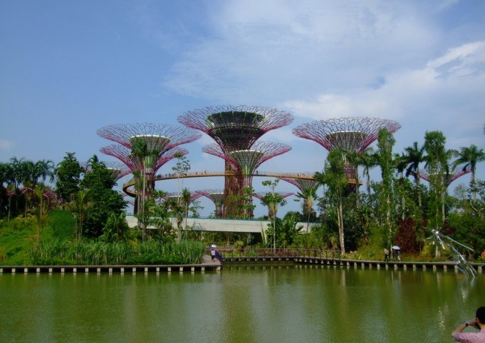 Coastal gardens 4