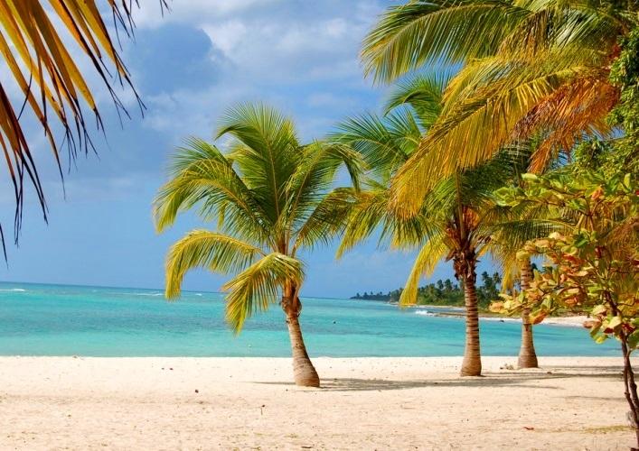 Saona Island 2