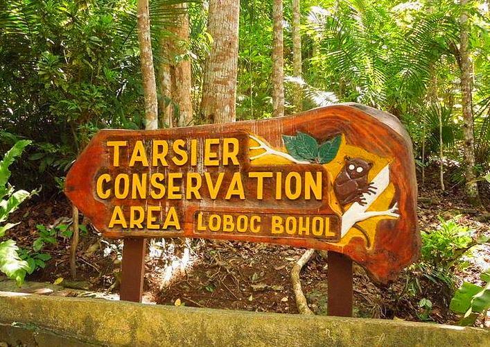 Troypoyt preserve 2
