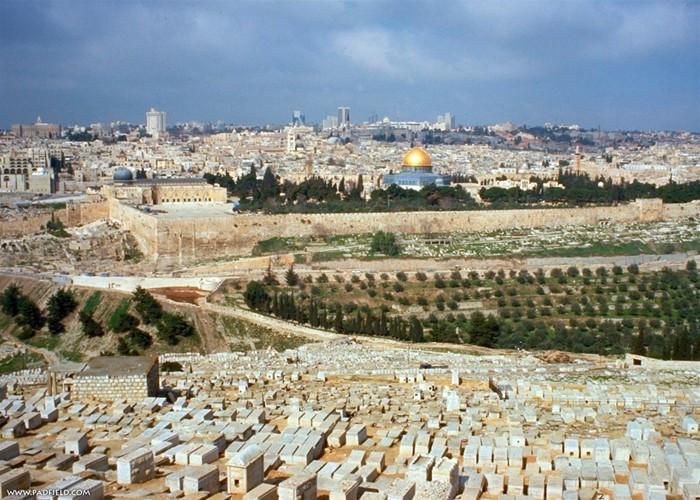 Самостоятельное путешествие в Израиль 4