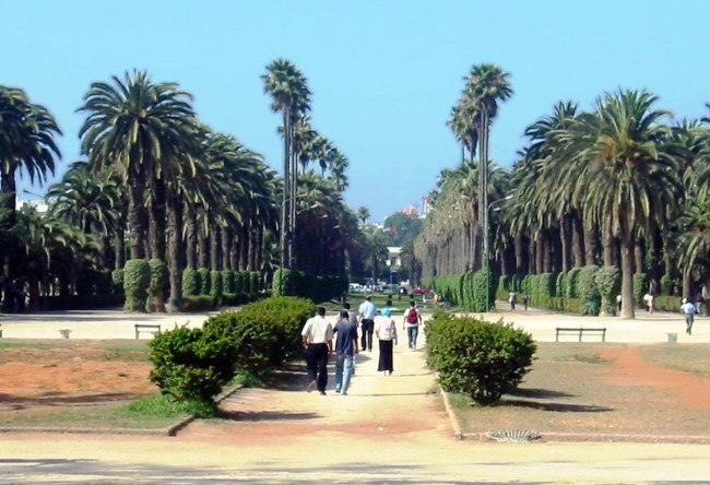 The economic and cultural capital of Morocco Casablanca 4