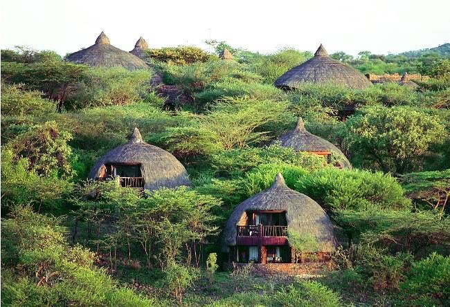 Jurassic Park Serengeti 4