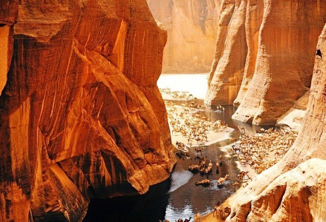 Unique oasis guelta darchei 5