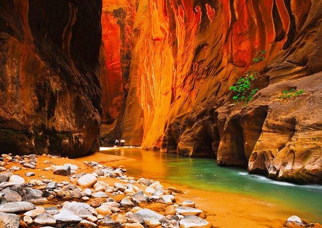 Каменный лес Навахо