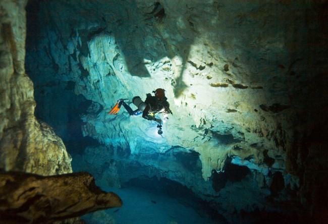 Паразиты в пещерах Мексики 3 1487.ам