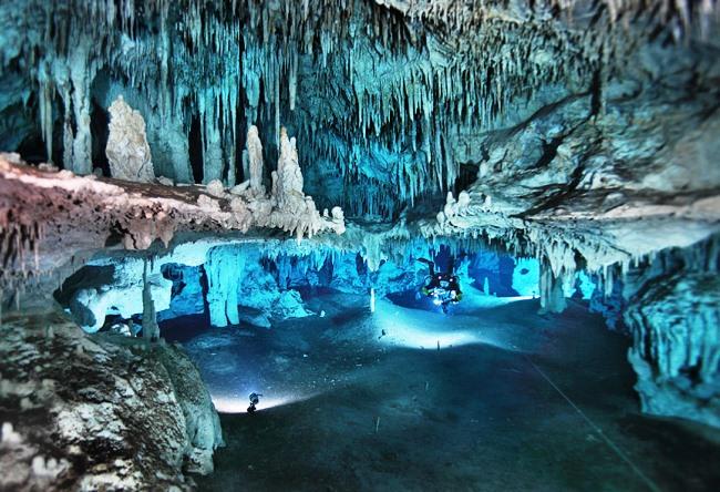 Паразиты в пещерах Мексики 4 1487.ам