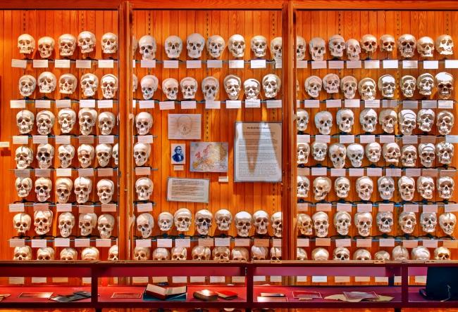 1458.ам. Музей медицинской истории Мюттера 3