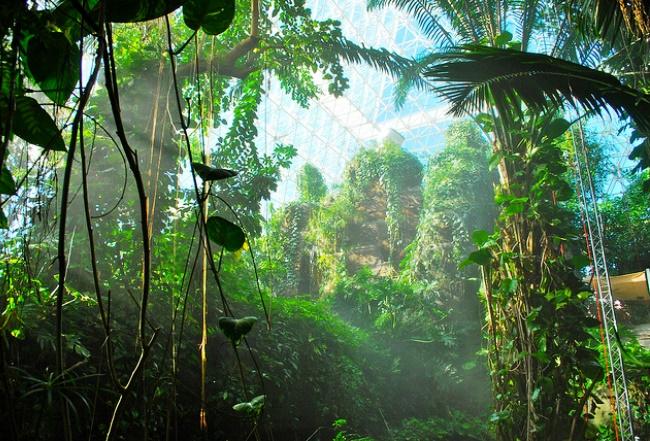 Биосфера 2, мечта или реальность?
