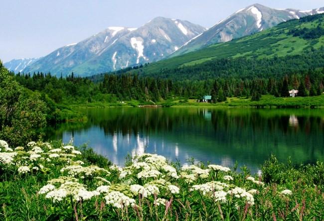 Эта странная российская земля Аляска 4