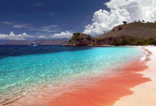 Розовый пляж острова Харбор 3