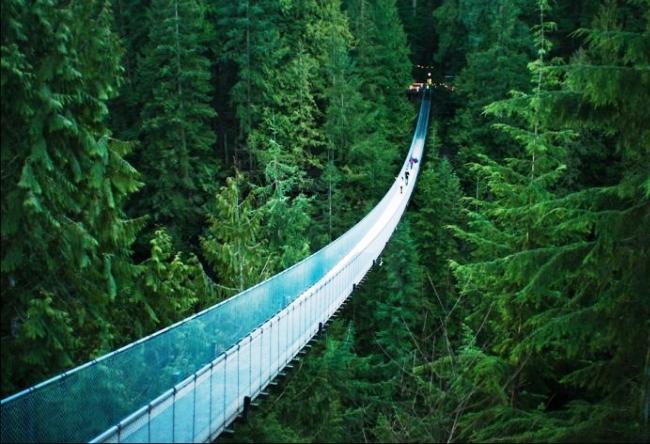 Мост Капилано в Британской Колумбии 3