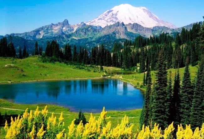 The top of Mount Washington 3