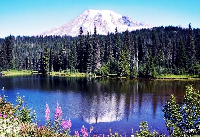 The top of Mount Washington 4