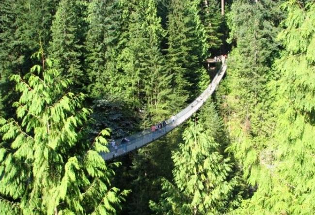 Capilano Bridge in British Columbia 2