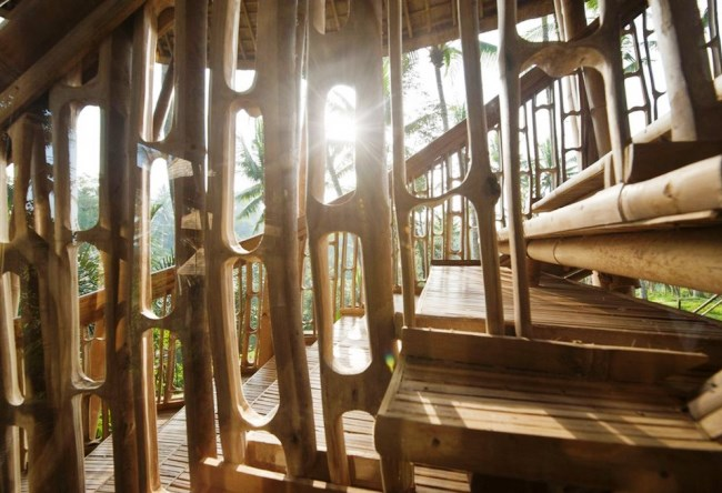Бамбуковая вилла от Элоры Харди 2