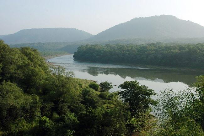 Гирский лес - один из лучших заповедников Индии