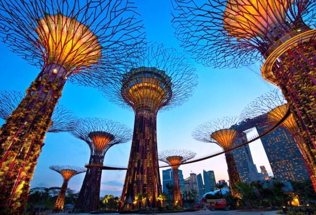 1456.аз. Bay South в Сингапуре 3