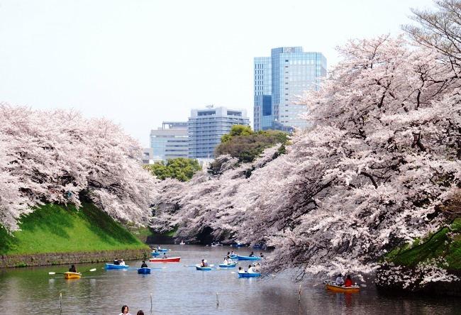 Чтобы не потеряться в Японии 3 1497.аз