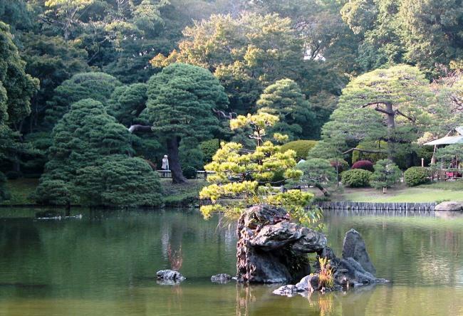 Поэтичный сад Rikugien в Токио 4