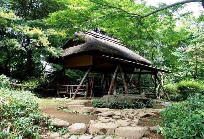 Поэтичный сад Rikugien в Токио 5