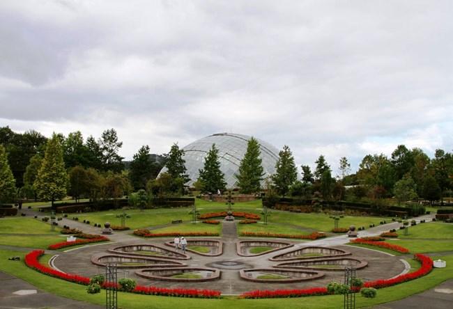 Парк цветов Тоттори 3