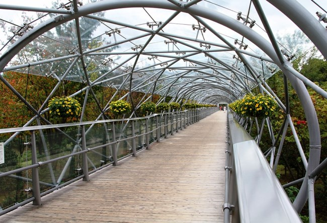 Парк цветов Тоттори 5