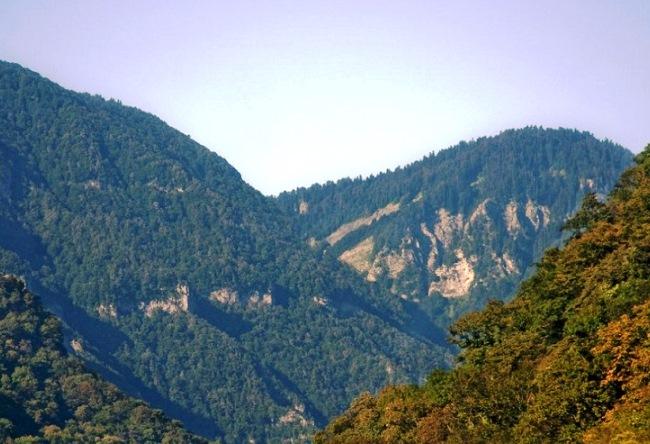 Абхазия Гагры приезжайте 5
