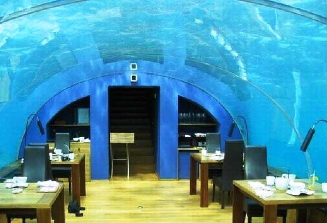 The underwater restaurant Ithaa 5
