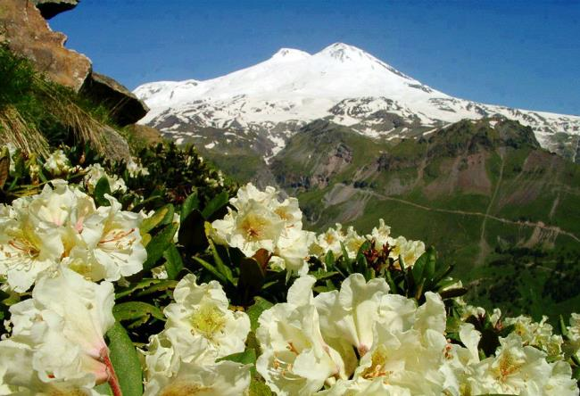 Mount Elbrus layered is the highest peak in Europe 4