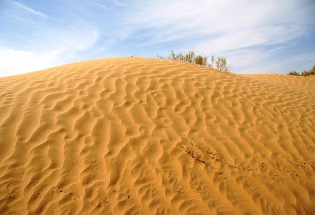 Red Desert Kyzylkum 5