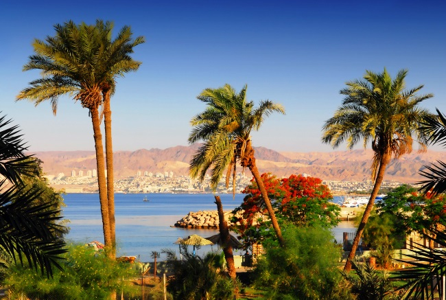 Aqaba is the best place to find 3