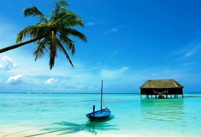 Lets go to Sri Lanka 4