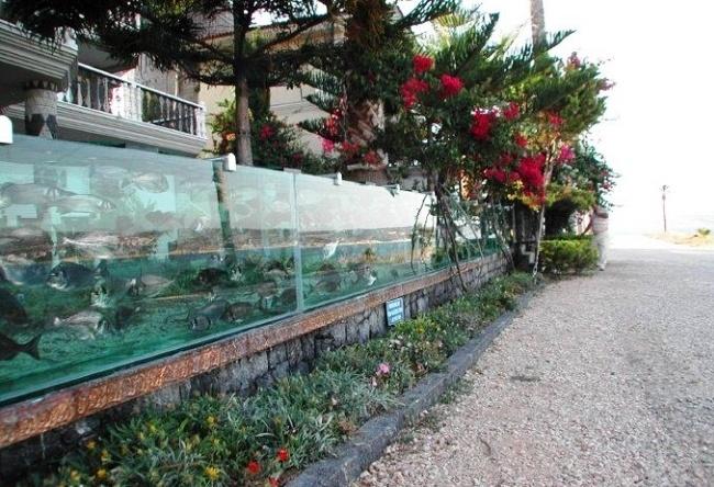 Aquarium of Ism city 5