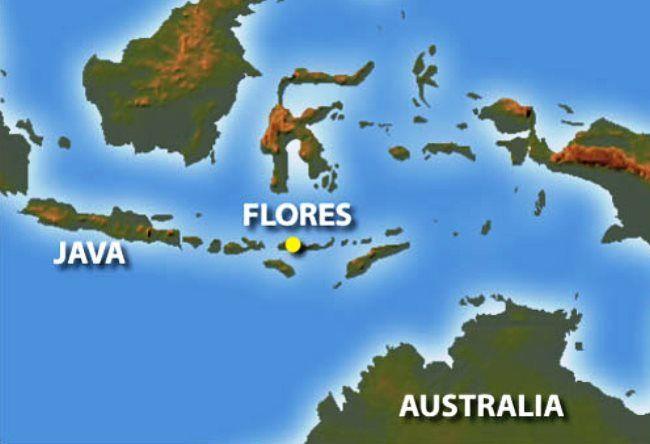 Marabou Flores 2