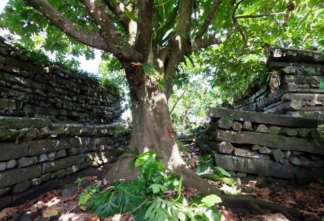 Ancient towns of Caroline Islands Nan-Mandol 4