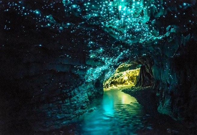 1468.австр. Пещеры Вайтомо 5