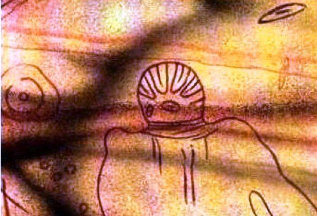 Unusual petroglyphs Australia 2